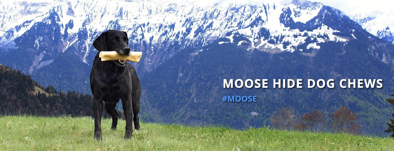 Moose Hide Dog Chews